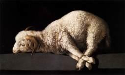 Passover Lamb 2