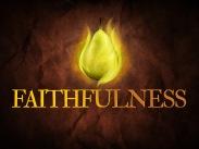 faithfulness_std_t_nv