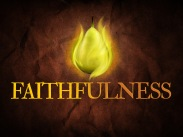 faithfulness_std_t_nv