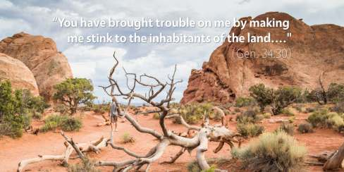 genesis-34-you-have-brought-trouble-on-me