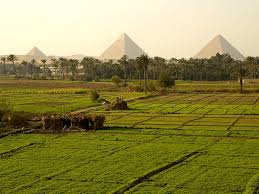 fertile egypt