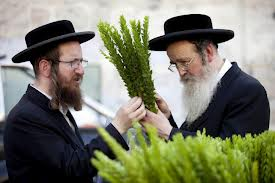 jewish men with lulav