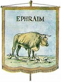 Ephraim flag